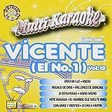 Karaoke: Vicente Fernandez 12