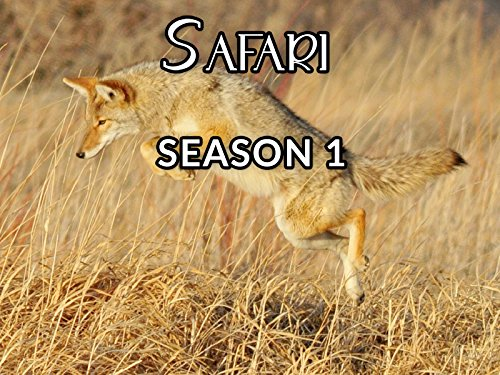 Safari - Season 1