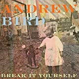 Break It Yourself Andrew Bird