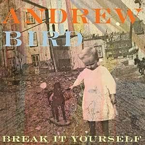 Break It Yourself: Limited