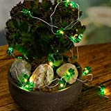2 pcs Copper Wire String Lights 20-led for Thanksgiving Harvest Decorations Birthdays Bedroom Home Living Room- Green Cactus