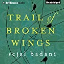Trail of Broken Wings Audiobook by Sejal Badani Narrated by Karen Peakes