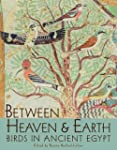 Between Heaven and Earth: Birds in An...