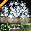 LE� Solar Fairy String Lights, 7 Meters, Waterproof, 50 LEDs, Daylight White, Portable, with Light Sensor, Outdoor Blossom String Lights, Ideal for Christmas, Wedding, Party, Garden, Patio, Flower, Blossom