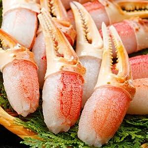 札幌蟹販 6L ズワイガニ カニ爪 1.0kg (21~30個入り)