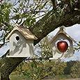 Plant Theatre Bird Nesting Box & Apple Feeder Set, Gift Boxed - Ideal Present