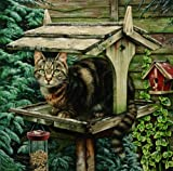 Henrietta, the Tabby Cat on the Bird Table, Greeting Card by Geoff Tristram, Greetings Card Size Approx. 140 x 140mm