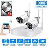 2CH 960P HD Video Wireless Security Camera System,HisEEu Extensible 4 channel 1080P WiFi NVR Kits for 2PCS 1.3MP Wireless Waterproof Bullet IP Cameras,Indoor/Outdoor,WiFi camera, 1TB HDD Pre-installed (Color: 2pcs 960P Cams+4CH 1080P NVR(1TB HDD Pre-installed))