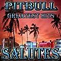 Pitbull Greatest Hits (Salutes)