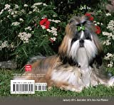 BT Shih Tzu 2015 Pocket Planner