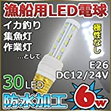 E26口金 漁船 船舶用 LED電球 無極性 12v 24v 6w 6000k 室内電球 イカ釣り  集魚灯