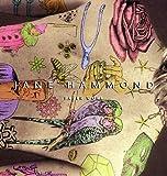 Jane Hammond: Paper Work (0271029811) by Marianne Doezema