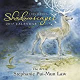 img - for Llewellyn's 2017 Shadowscapes Calendar book / textbook / text book