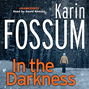 In the Darkness Audiobook