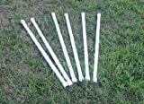 Stick In Weave Poles Dog Agility Equipment
