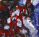 I'll Tell What I Saw by Trey Gunn