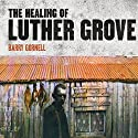 Healing of Luther Grove Audiobook by Barry Gornell Narrated by Mark Meadows