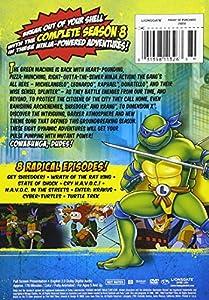 Teenage Mutant Ninja Turtles: Season 8 [DVD] [Region 1] [US Import] [NTSC]