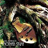 Songtexte von Joel Harrison - Mother Stump