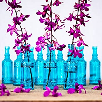 Luna Bazaar Small Vintage Glass Bottle Set (6.5-Inch, Cylinder Design, Turquoise Blue, Set of 12) - Flower Bud Vases Bulk - For Party and Wedding Centerpieces