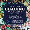 Beading, 2nd Edition: One Day Beading Mastery Audiobook by Ellen Warren Narrated by Danielle Lazarakis