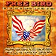 Free Bird: The Steel Guitar Tribute to Lynyrd Skynyrd