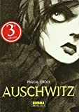 Auschwitz (CÓMIC EUROPEO)