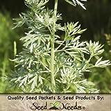 500 Seeds, Wormwood (Artemisis absinthium) Seeds by Seed Needs