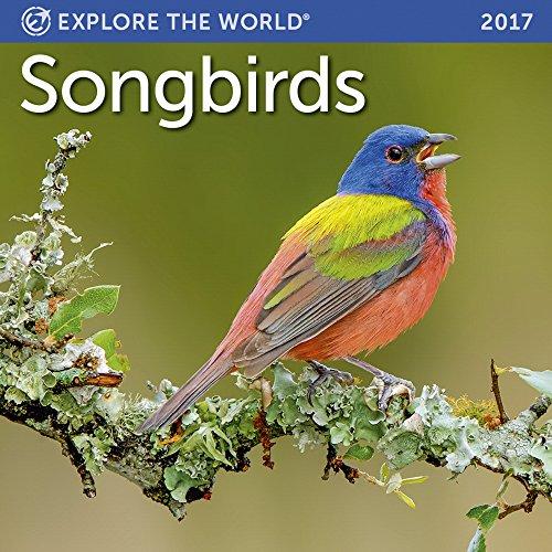 Songbirds Mini Wall Calendar 2017