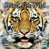 Spirit of the Wild/National Wildlife Federation® 2014 Wall (calendar)
