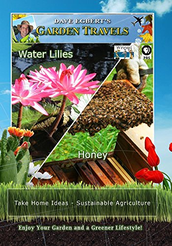 Garden Travels Water Lilies Honey (Water Lilies Dvd compare prices)