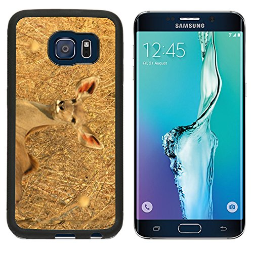 MSD Premium Samsung Galaxy S6 Edge Aluminum Backplate Bumper Snap Case Kudu Antelope Botswana Image 264868235 (Kudu Edge compare prices)