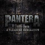 1990-2000: A Decade Of Domination ~ Pantera