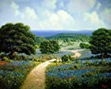 Hill Country Retreat by James Lasswell - Texas Wildflower Bluebonnet Art Print - 16x20