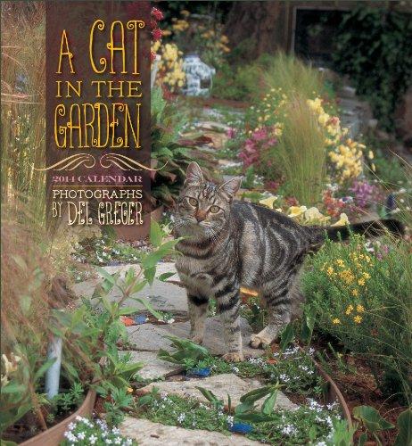 Cat In The Garden 2014 Wall Calendar