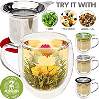 Double Wall Glass Mug with Infuser