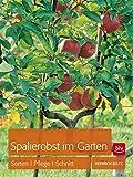 Image de Spalierobst im Garten: Sorten, Pflege, Schnitt