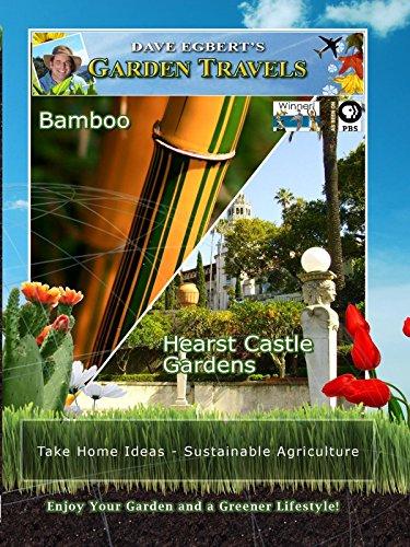 Garden Travels - Bamboo - Hearst Castle Gardens