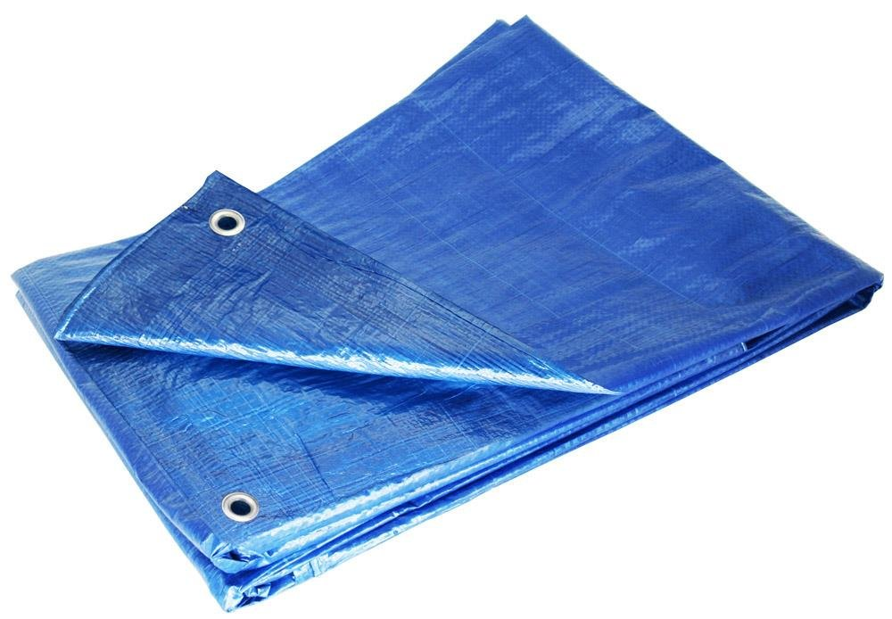 Grizzly Tarps GTRP810 8 x 10-Feet