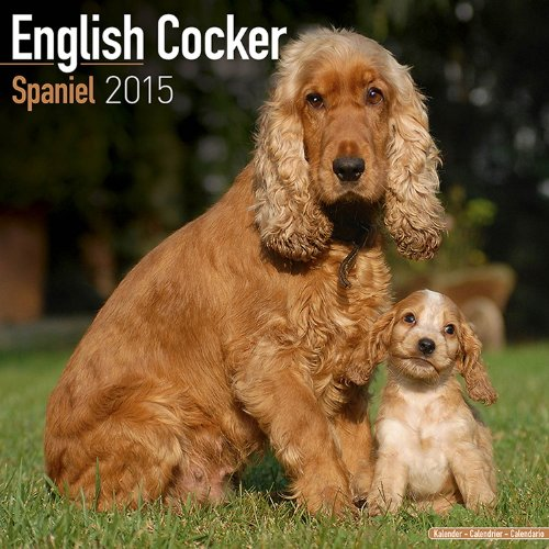 61W5Im jx%2BL 2015 Dog Calendars