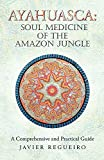 Ayahuasca: Soul Medicine of the Amazon Jungle: A Comprehensive and Practical Guide (English Edition)