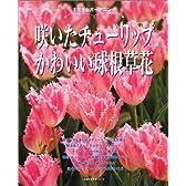 咲いたチューリップかわいい球根草花―すてきなガーデニング (主婦の友生活シリーズ)