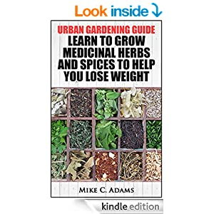how to lose weight well big w