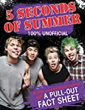 5 Seconds of Summer: 100% Unofficial