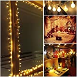 Ball Fairy Lights, 39 ft 100 LED Globe String Light with 31V Low Voltage Plug with Wireless Remote Control and Timer, 8 Modes,Warm White, Dimmable