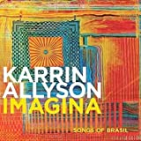 How Long Has This Been Goin... - Karrin Allyson