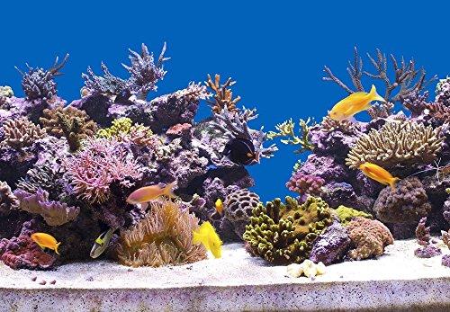 200-cm-Aquarium-Hintergrund-Folie-hell-blau-50-cm-breite-hhe