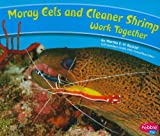 img - for Moray Eels and Cleaner Shrimp Work Together (Animals Working Together) book / textbook / text book