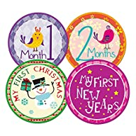 Blulu Baby Monthly Holiday Stickers N…