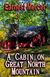 img - for A Cabin on Great North Mountain book / textbook / text book